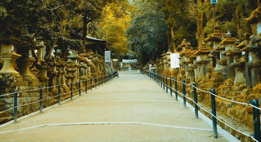 sanctuaire de kasuga